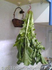 奄美世のごはん#005-2 「大根の葉」