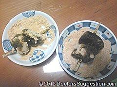 奄美世のごはん#008-1 | DoctorsSuggestion.com