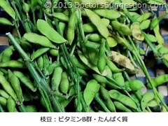 枝豆:ビタミンB群・たんぱく質|DoctorsSuggestion.com(古田朋子 奄美世のごはん)