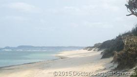 砂浜(奄美世のごはん by 古田朋子)|DoctorsSuggestion.com